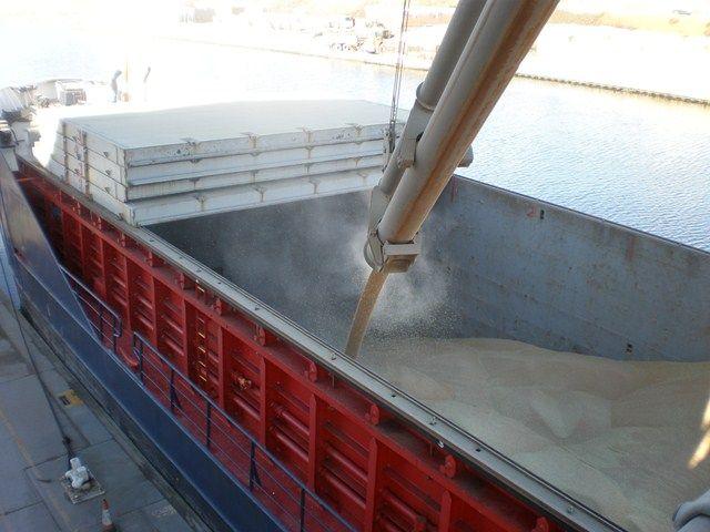 grain storage image